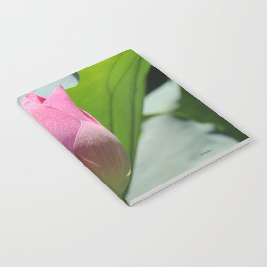 Lotus Bud in West Lake Notebook