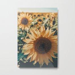 Happy Sunflower Field Metal Print