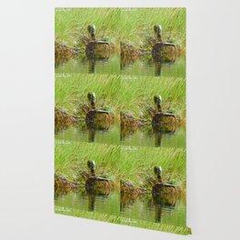 Swamp Chair Wallpaper