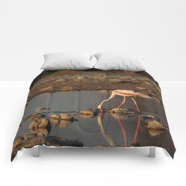 Birds of Namibia 3 Comforters
