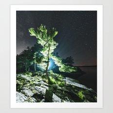 Pine of Night Art Print