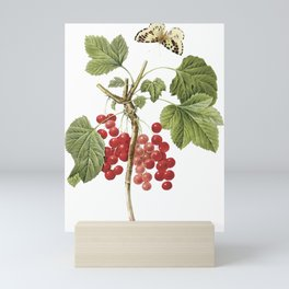 Botanical Print, Red Currant, Ribes Rubrum Mini Art Print