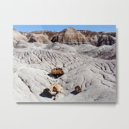 The Painted Desert & Petrified Forest Metal Print
