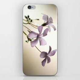 Sorrel iPhone Skin