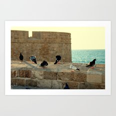 Old City Acre Art Print