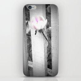 Pink Beauty iPhone Skin
