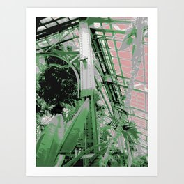 Chicago Conservatory Art Print