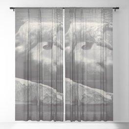 fernweh Sheer Curtain