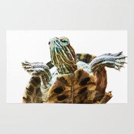 Small red-eared turtle in aquarium Rug