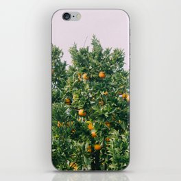 Oranges for Days iPhone Skin