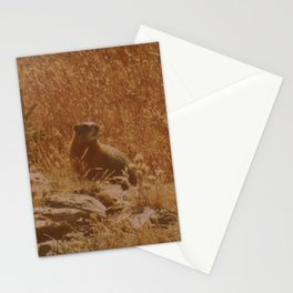 King of the Rock Stationery Cards