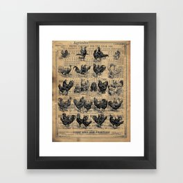 Vintage Chicken Study from 1895 Dictionary on Lancaster, PA antique almanac page Framed Art Print