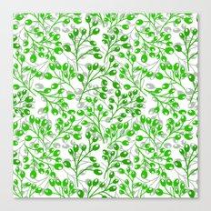 Green Autumn berries Canvas Print