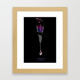Eumomota Plugciliosa Framed Art Print
