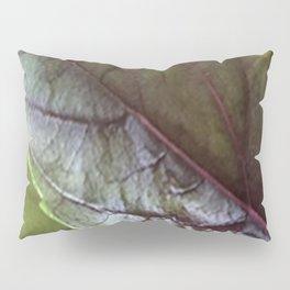 Basil Pillow Sham