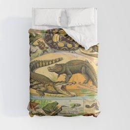 Reptiles Chart Nature Vintage Snake Turtle Alligator Comforters