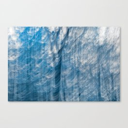 Wailing Banshee Forest Canvas Print