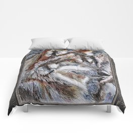 Gray Wolf Watches and Waits Comforters