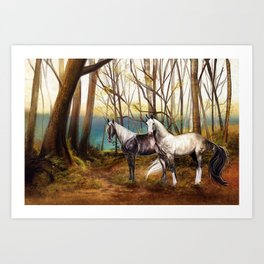 A peaceful place Art Print