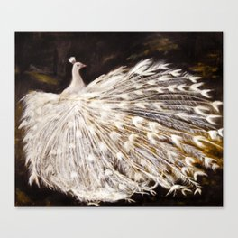 White Peacock Oil Painting Canvas Print
