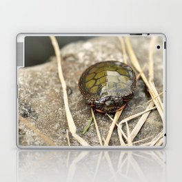 Painted Turtle Laptop & iPad Skin