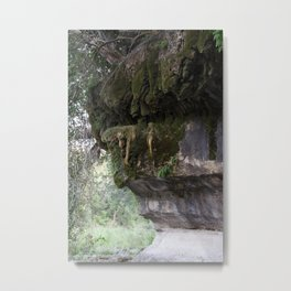 Endless Thirst Metal Print