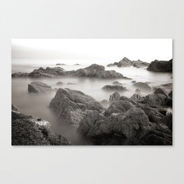 in time Canvas Print