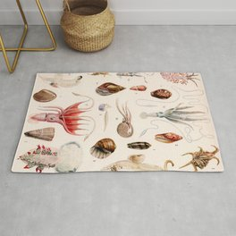 Adolphe Millot - Mollusques 01 - French vintage zoology illustration Rug