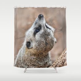 Meerkat looking for eagles Shower Curtain