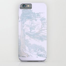 Ancient Tree in wind, snow, and fog on Windy Ridge, Colorado iPhone Case