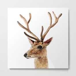 deer watercolor painting Metal Print