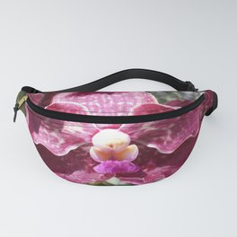 Mimi cousin Fanny Pack