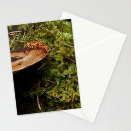 Wood Mushroom Stationery Cards