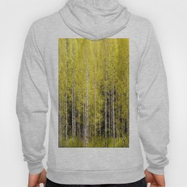 Lovely spring atmosphere - vibrant green leaves on the trees - beautiful birch grove Hoody