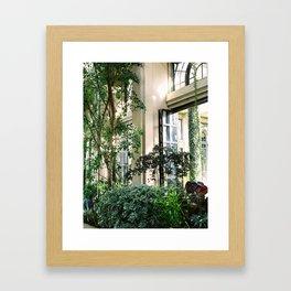 Longwood Gardens Framed Art Print