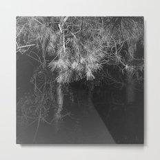 Night Pine Wood Metal Print