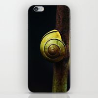snail iPhone & iPod Skins featuring Snail by LoRo  Art & Pictures