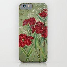 garden 008 gypsophila panicula  Sweet William21 iPhone Case