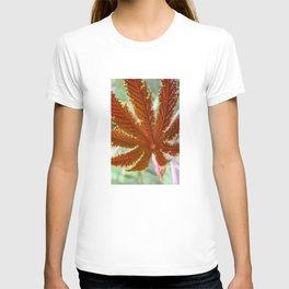 Red Leaf T-shirt
