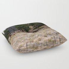 Colorado, wildlife Floor Pillow
