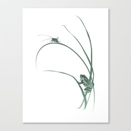 Frog & Cricket Canvas Print