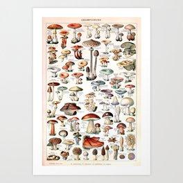 Adolphe Millot - Champignons pour tous - vintage poster Kunstdrucke