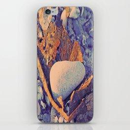 Old Metal, Stones & Shells iPhone Skin