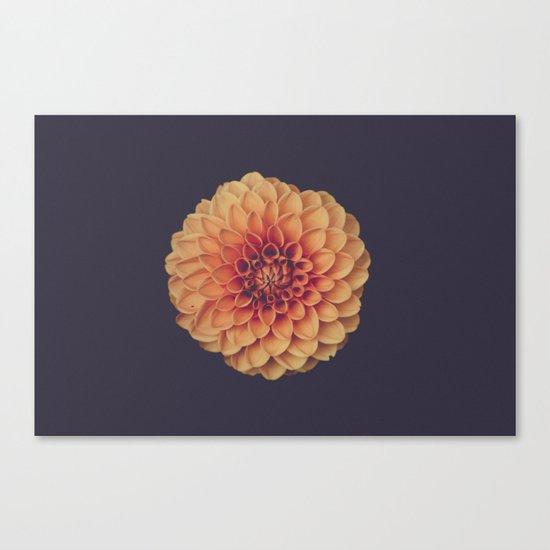 Yellow Flower Petals Canvas Print