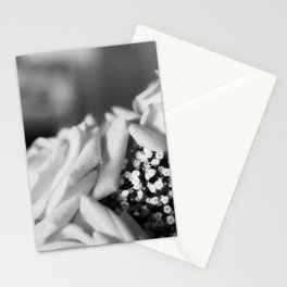 White Roses Stationery Cards