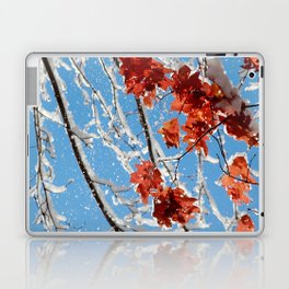 Seasons Mingle Laptop & iPad Skin
