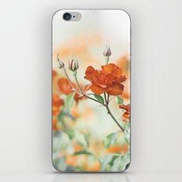 Orange Rose Flower Photography, Red Orange Roses, Burnt Orange Flowers iPhone Skin
