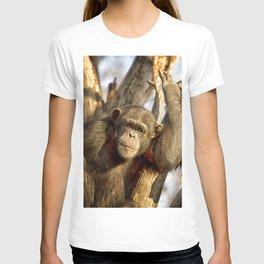 Western Lowland Gorillas T-shirt