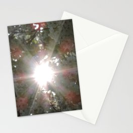 Sunlight through white blossoms Stationery Cards