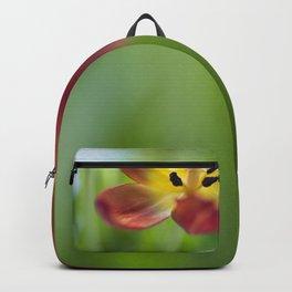 Tulip In The Corner Backpack